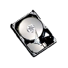 Seagate/ Maxtor 8D300S0 Atlas 10K V 300GB 10K RPM SAS Drive with 16MB Buffer